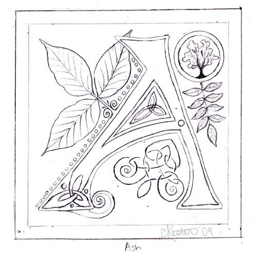 500x494 Letter A Sketch By Ladyfireoak