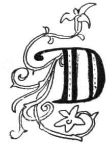 214x288 The Letter D