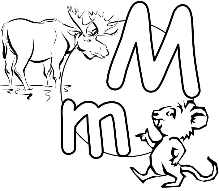 708x618 Monty The Moose