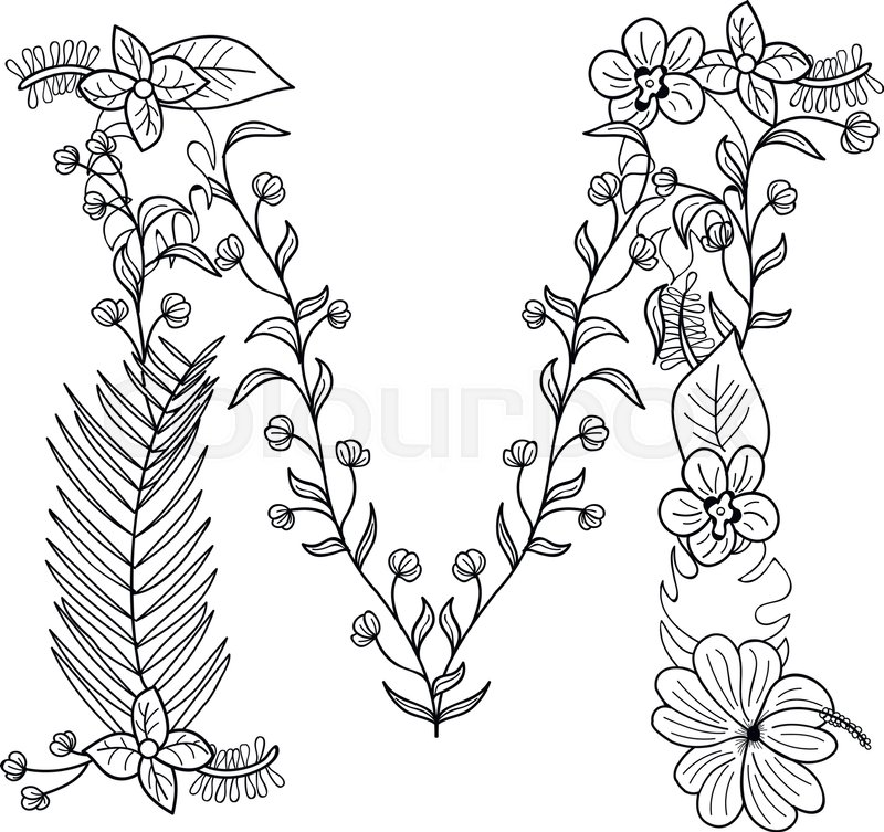 800x753 Tropical Floral Summer Pattern Hand Drawn Ornamental Font