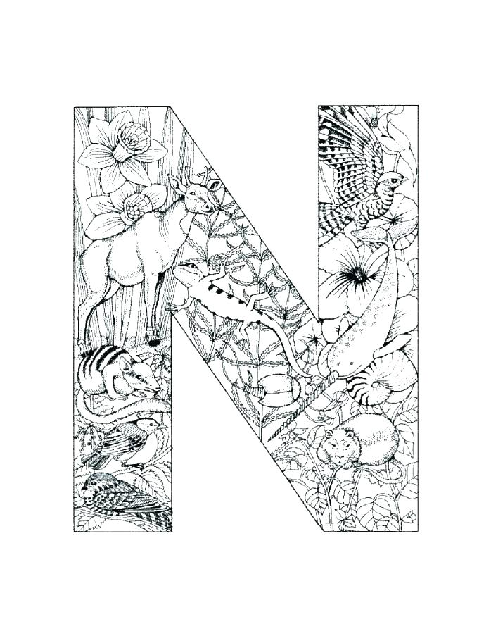 698x903 Letter N Coloring Page