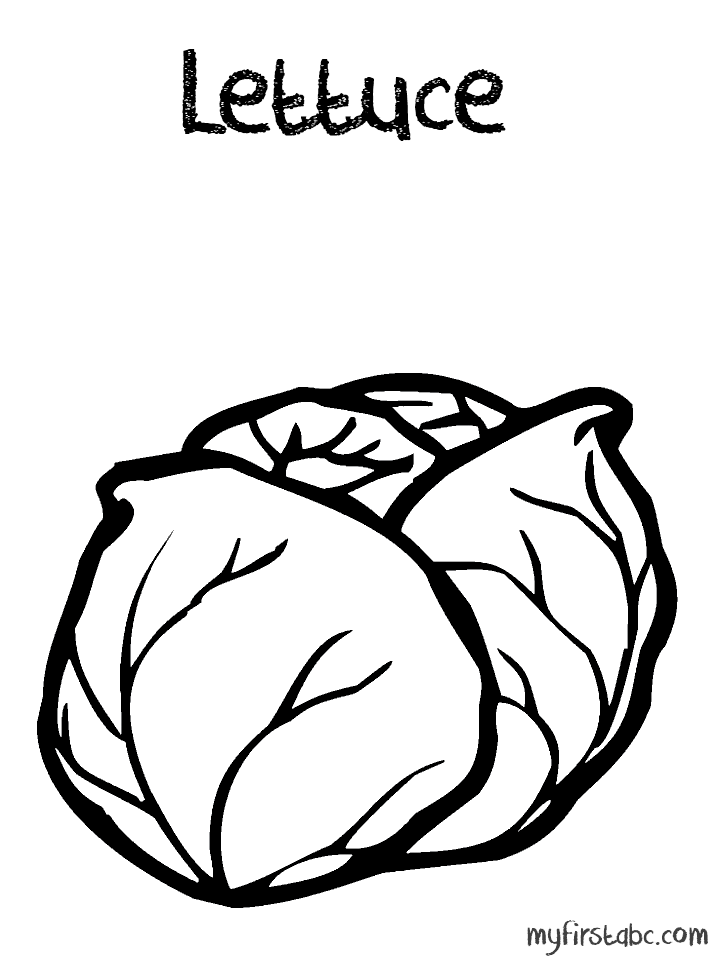 718x958 Lettuce Coloring Page