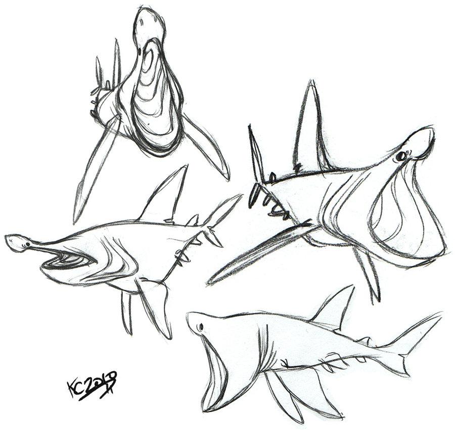 900x850 Basking Shark By Polarkeet