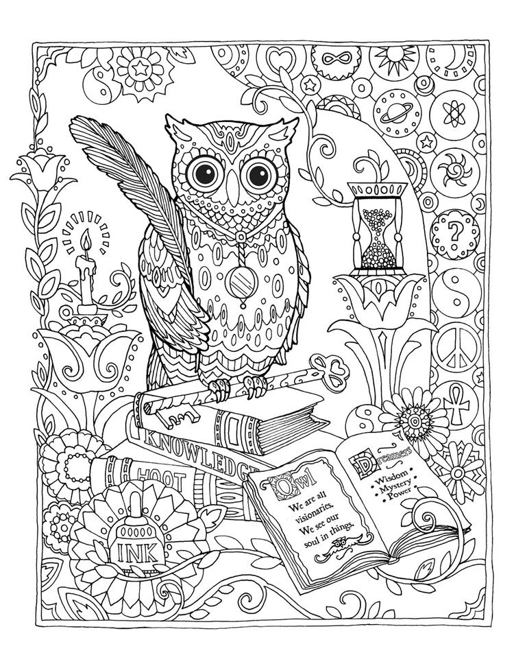 750x971 Creative Haven Owls Coloring Book By Marjorie Sarnat, Library Owl