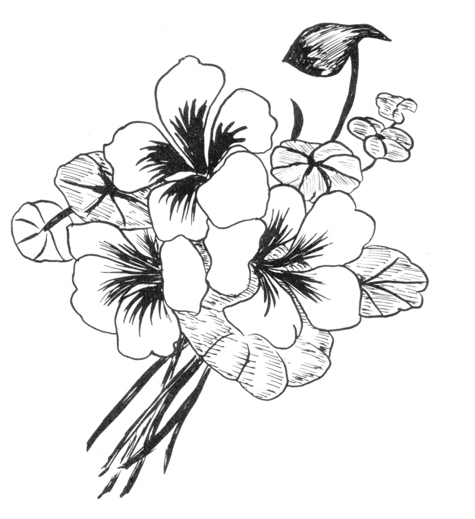 938x1024 Art Beautiful Flower Drawing Coloring Pages Flower Simple