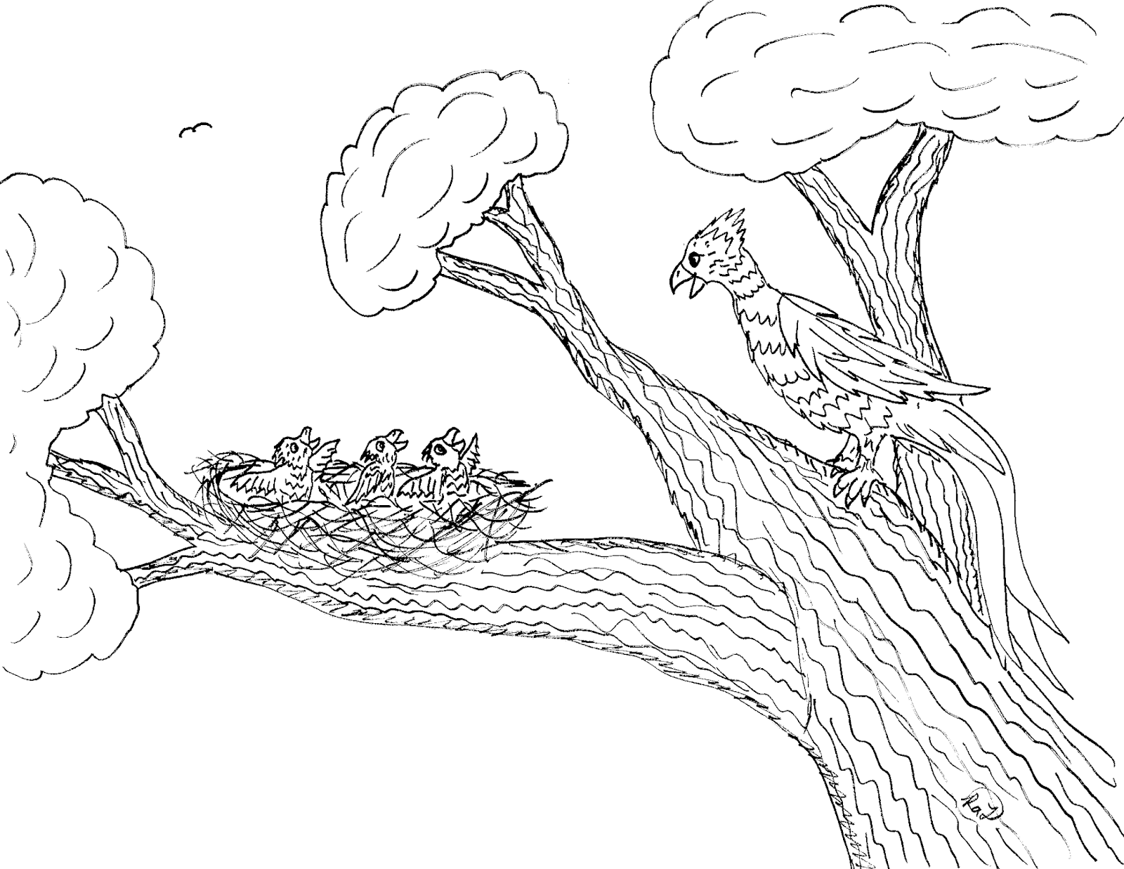 1600x1237 Robin's Great Coloring Pages Phoenix Life Cycle