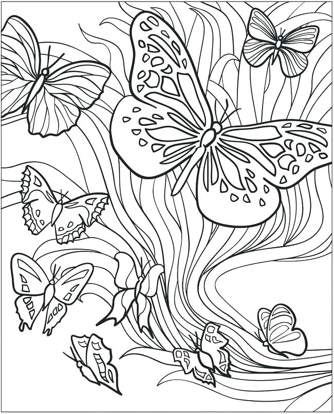650x806 Butterfly Coloring Sheets Butterflies Page