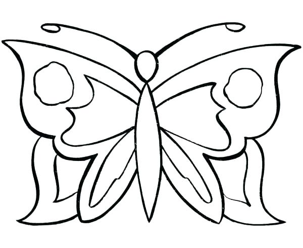 600x490 Butterfly Life Cycle Coloring Pages Butterfly Butterfly Life Cycle