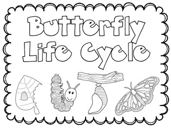 350x263 Butterfly Stages Coloring Pages Broken Heart Coloring Pages