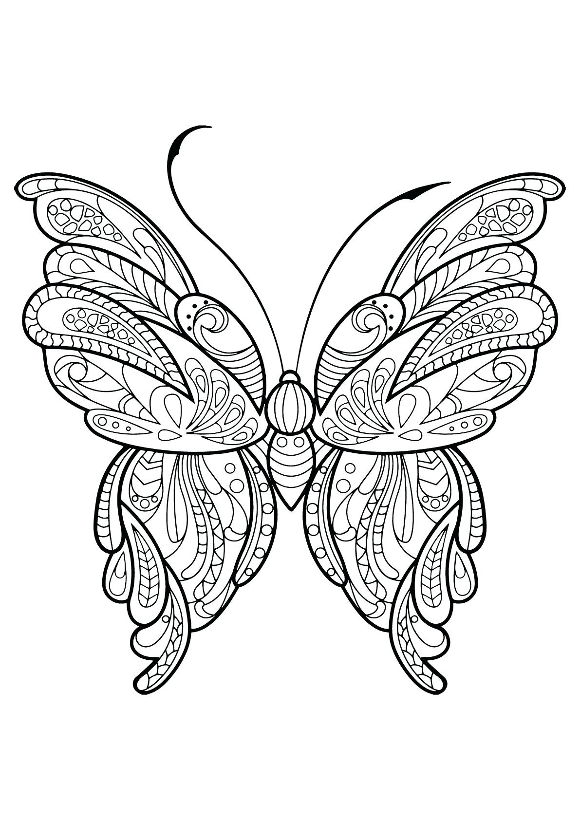 1191x1684 Coloring Page Butterfly Life Cycle