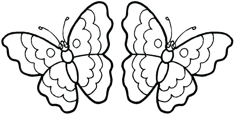 800x389 Coloring Pages Butterfly