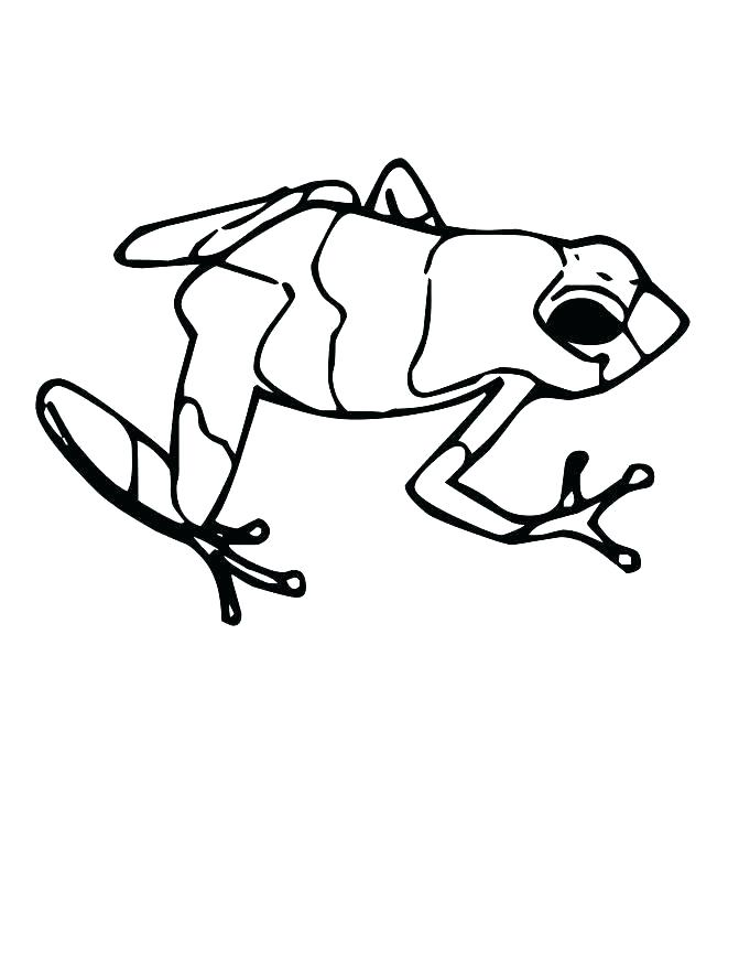 671x868 Tadpole Coloring Page Coloring Pictures Of Frogs Leaping Frogs