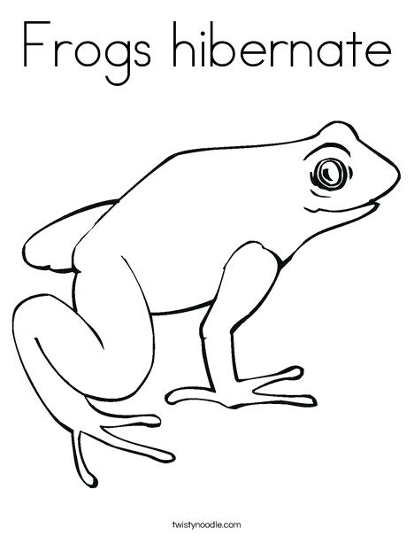 468x605 Coloring Pages Frog