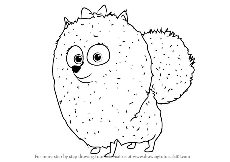 800x566 Learn How To Draw Gidget From The Secret Life Of Pets (The Secret