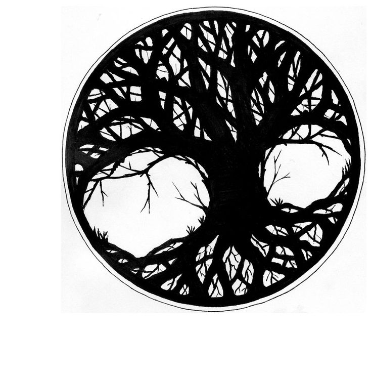736x741 27 Best Tree Of Life Images On Tree Of Life, Bricolage
