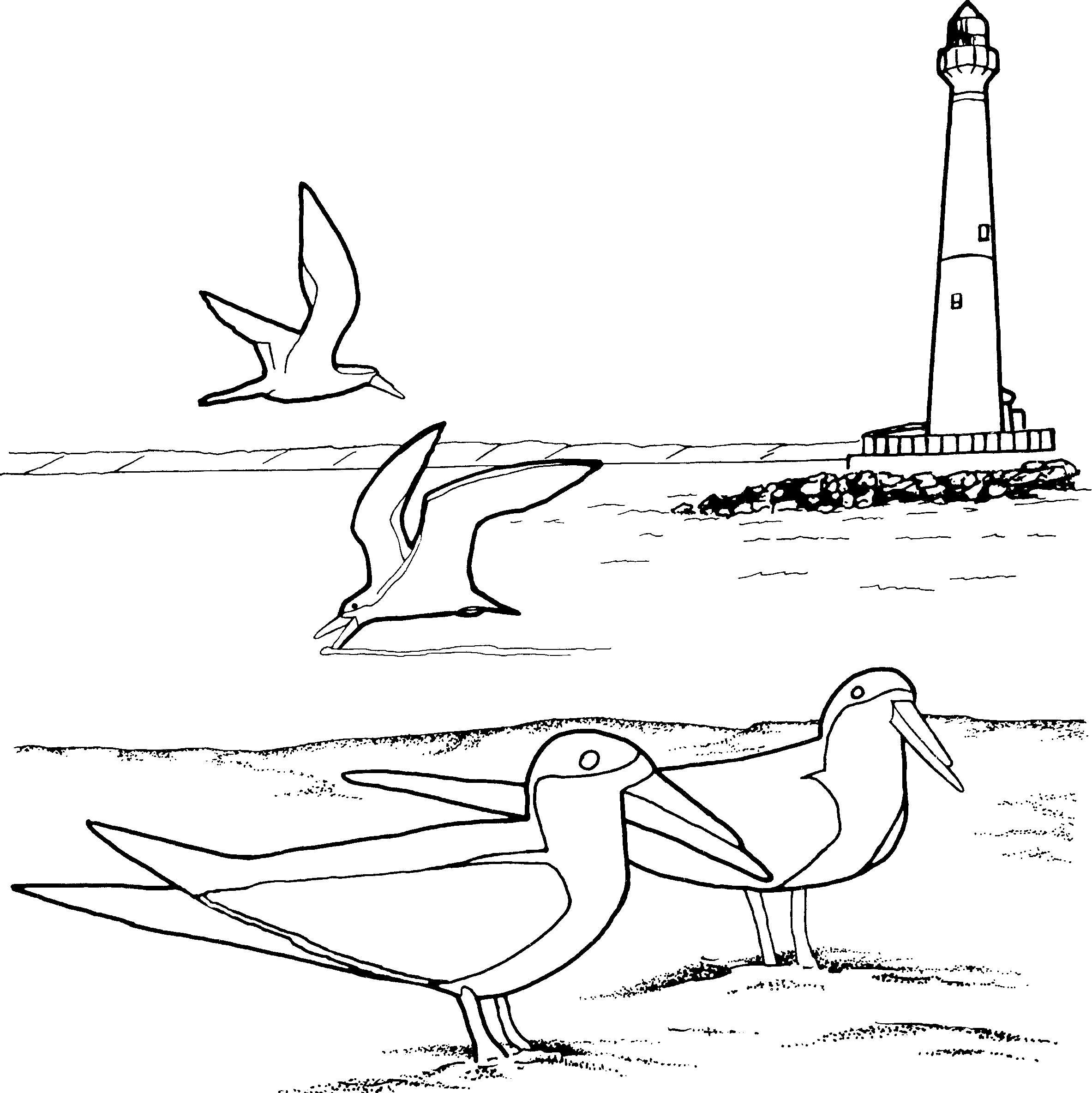 2366x2368 Free Printable Lighthouse Coloring Pages For Kids