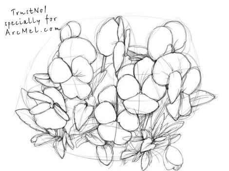 470x352 15 Best Drawing Flowers Images On Botanical