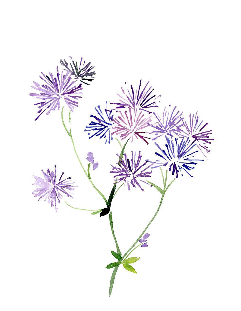 800x1035 Handmade Watercolor Flowers In Purple 8x10 Wall Art Watercolor