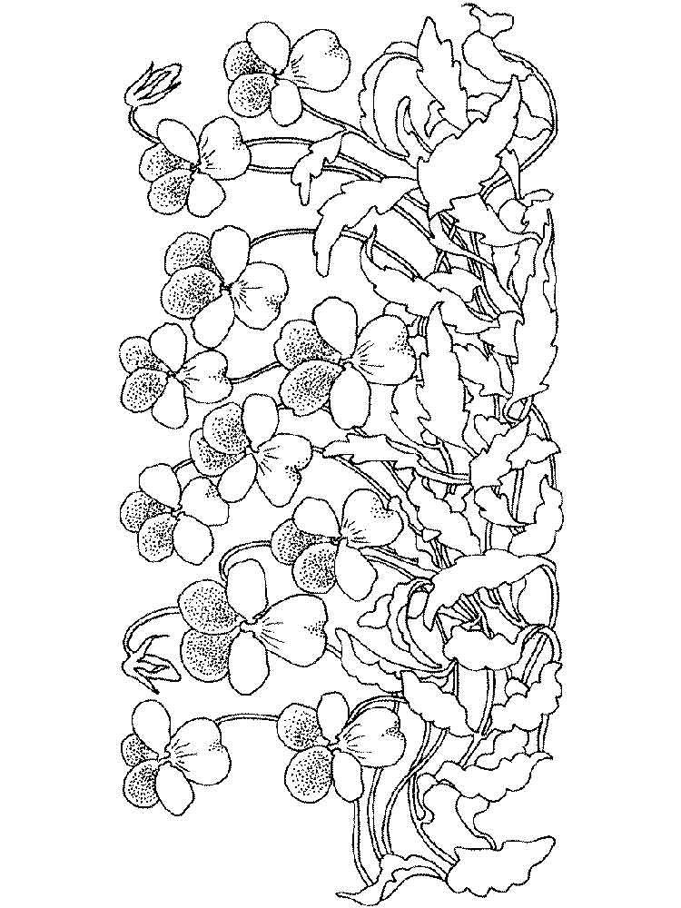 750x1000 Flowers In A Vase