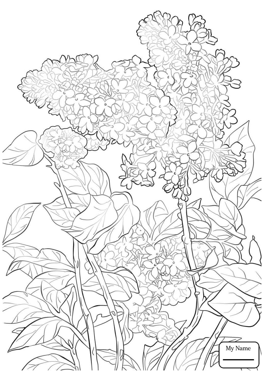 1040x1469 Flowers