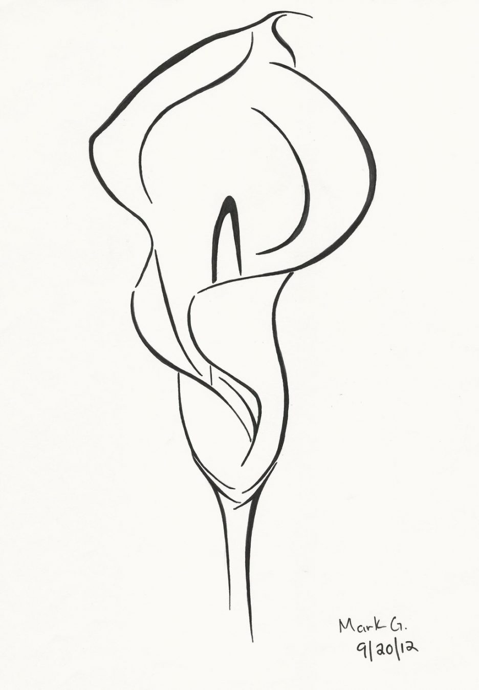 936x1347 Adult Calla Lily Drawing Calla Lily Leaves Drawing. Calla Lily
