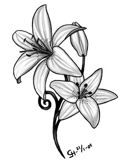 442x572 Floral Designs Symbols Lilly Tattooda Wei Lily Flower Lily Tattoo