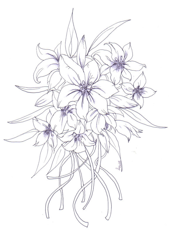 600x794 Lilium Flower Drawing By Ocean Sarina
