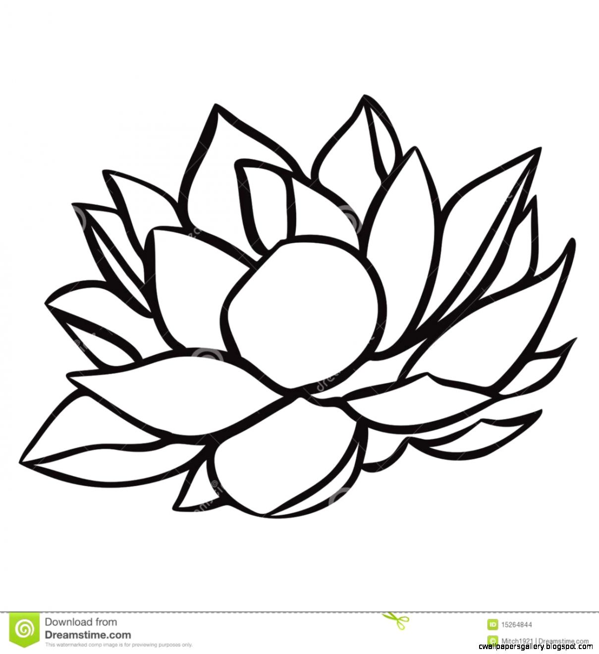 1209x1320 Simple Water Lily Drawing Wallpapers Gallery