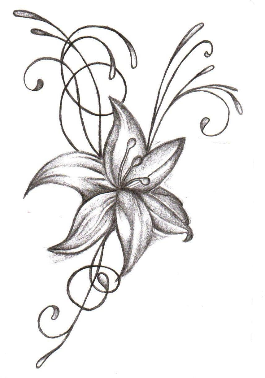 856x1221 Collection Of Tattoo Design Of Lily Flowers