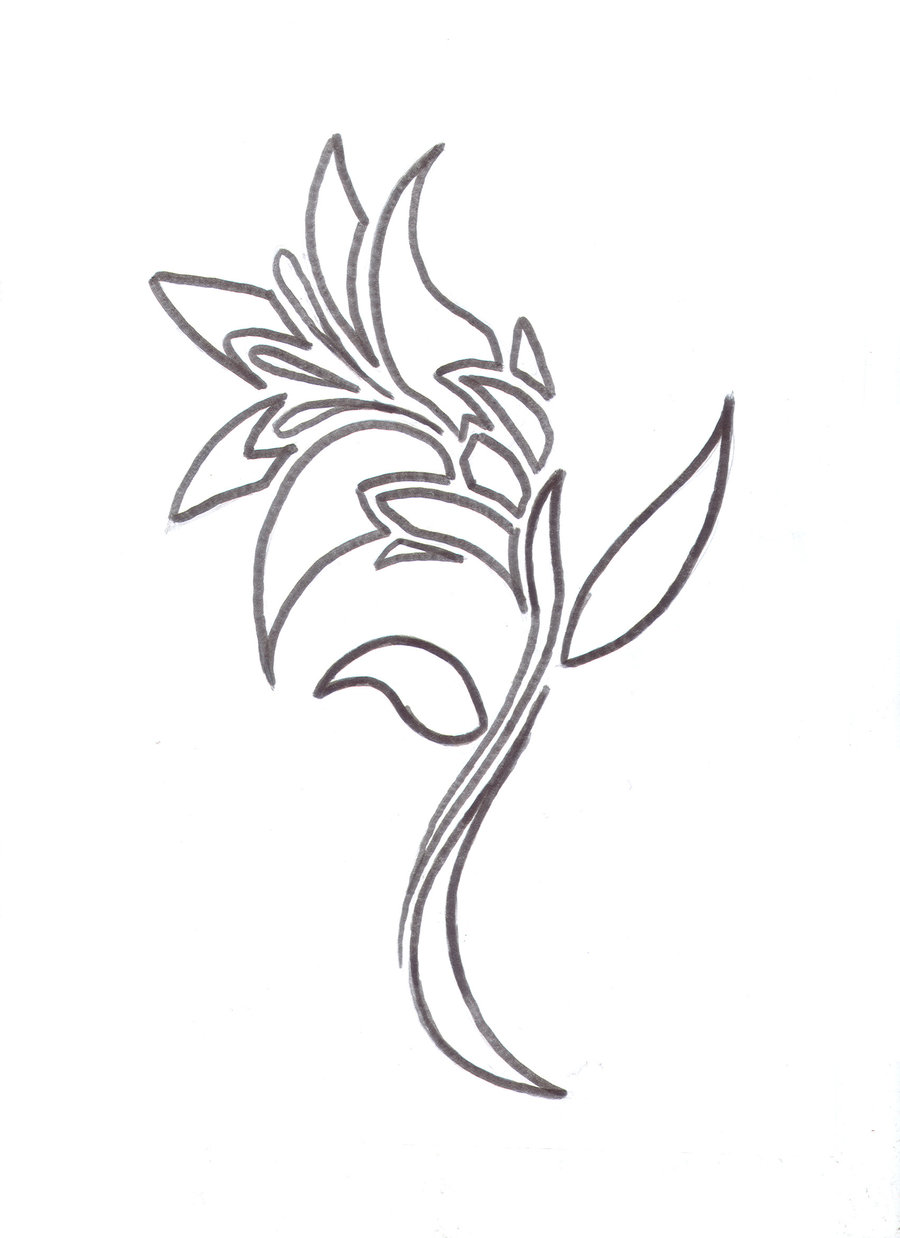 Lily drawing tattoo at getdrawings free for personal use lily 900x1238 lily flower tattoo design by average sensation on deviantart izmirmasajfo Gallery