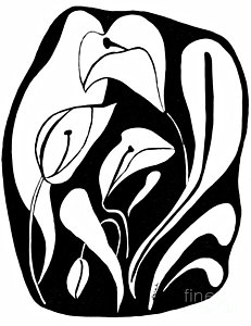 231x300 White Lily Flower Drawings Fine Art America