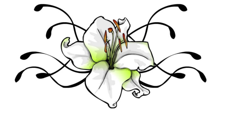 Lily Flower Tattoo Drawing At Getdrawings Com Free For Personal