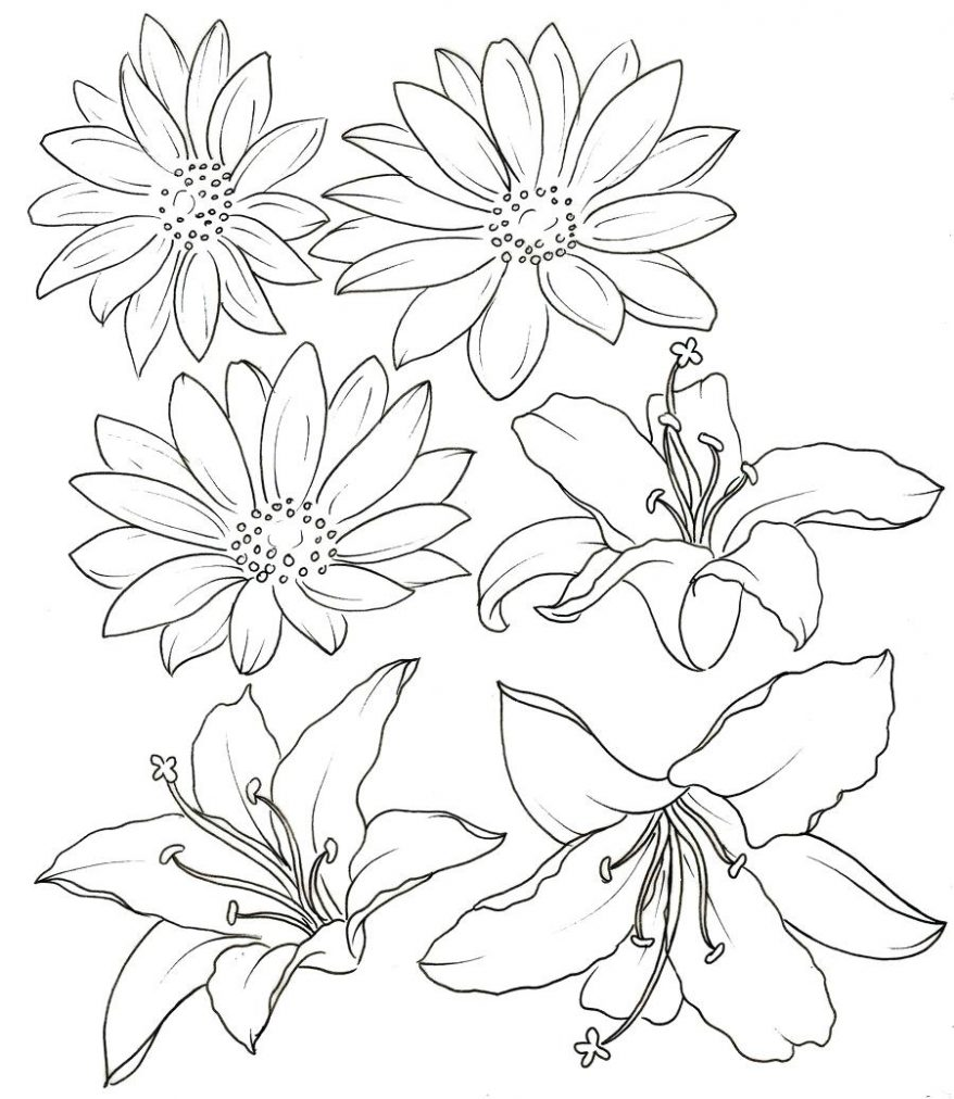 Lily flower tattoo drawing at getdrawings free for personal 878x1012 lily coloring pages tiger lily pencil drawings of flowers google izmirmasajfo Choice Image