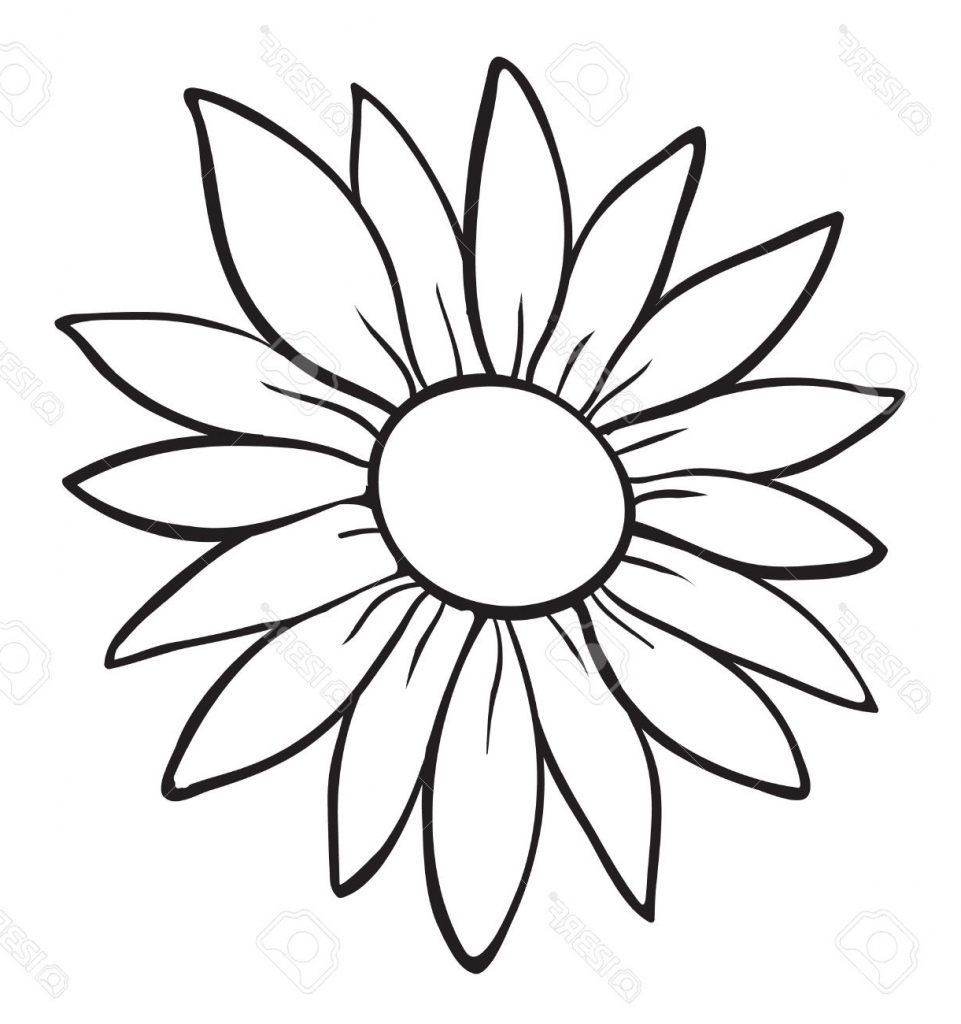 961x1024 Flower Drawing Outline Lily Flower Drawing Outline The Best