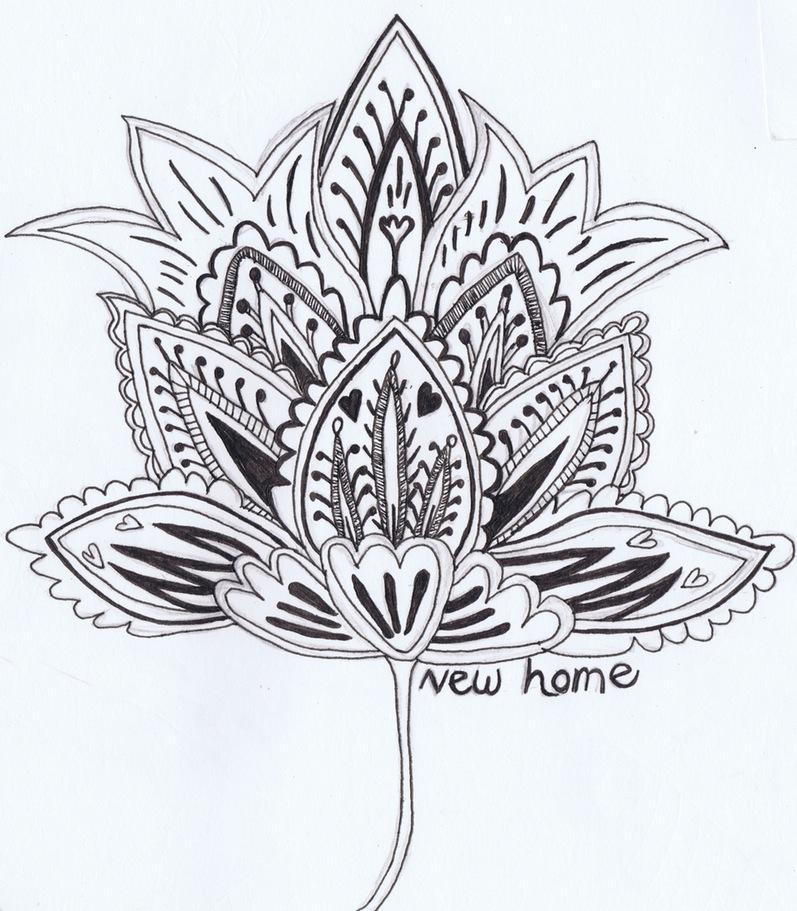 797x911 Lily Flower Drawings In Pencil Wallpaper Design Gallery ~ Sumgun