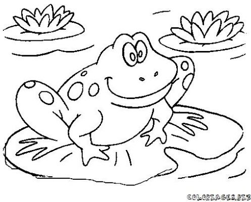 497x400 Frog Lily Pad Coloring Page Printable In Pretty Draw On Lilypad2