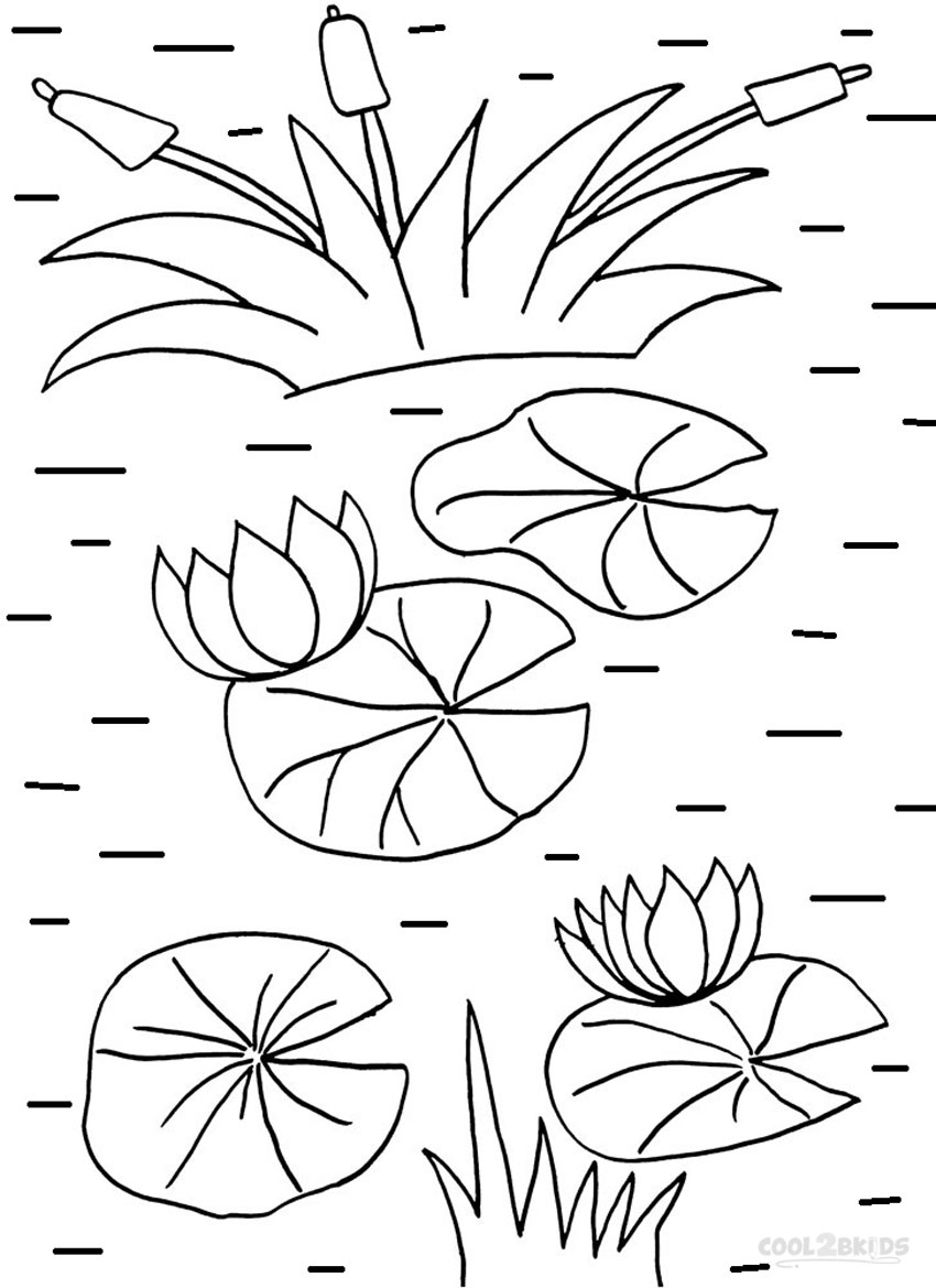 850x1169 Printable Lily Pad Coloring Pages For Kids Cool2bkids