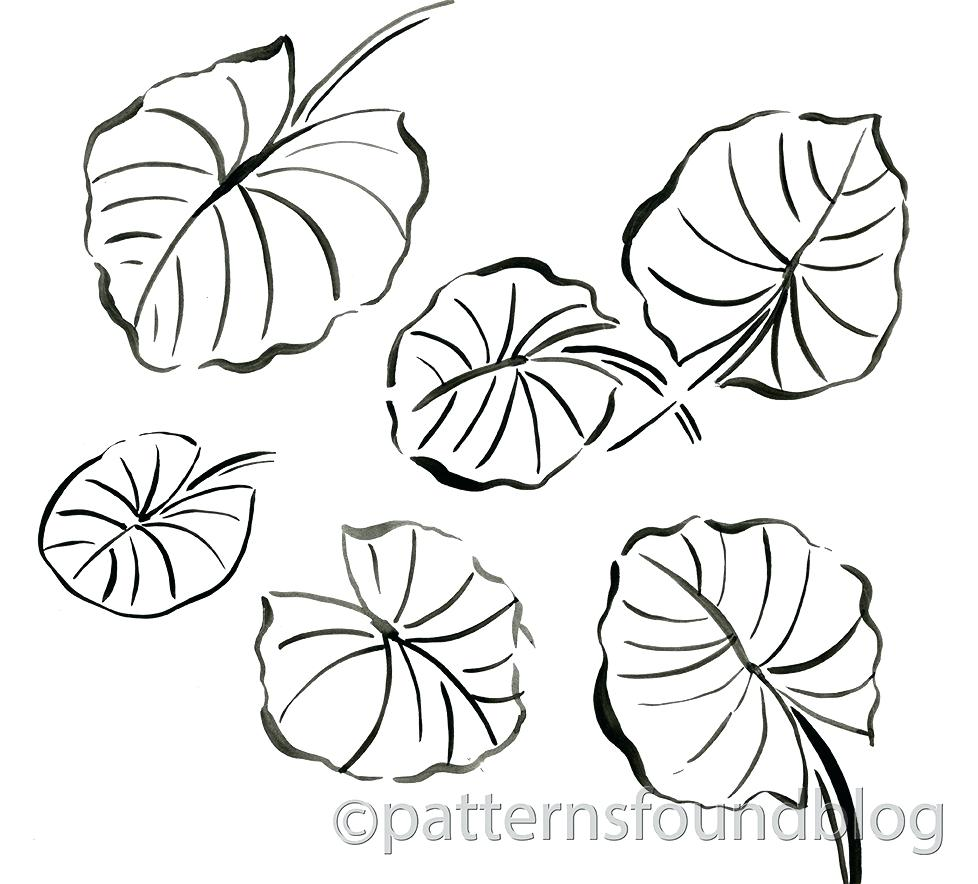 978x884 Coloring Lily Pad Coloring Page
