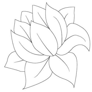 frog on lily pad coloring page - lily pad drawing at free for personal