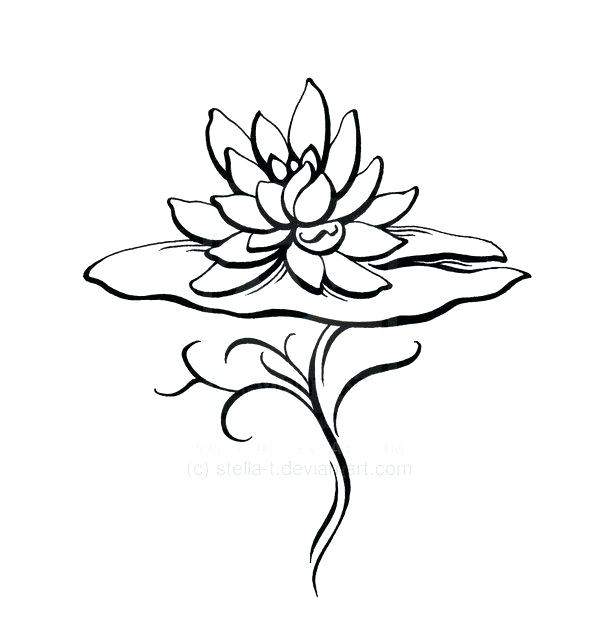 600x641 Lily Pad Dot To Dot Coloring Page Dot Coloring Pages The Horse Dot