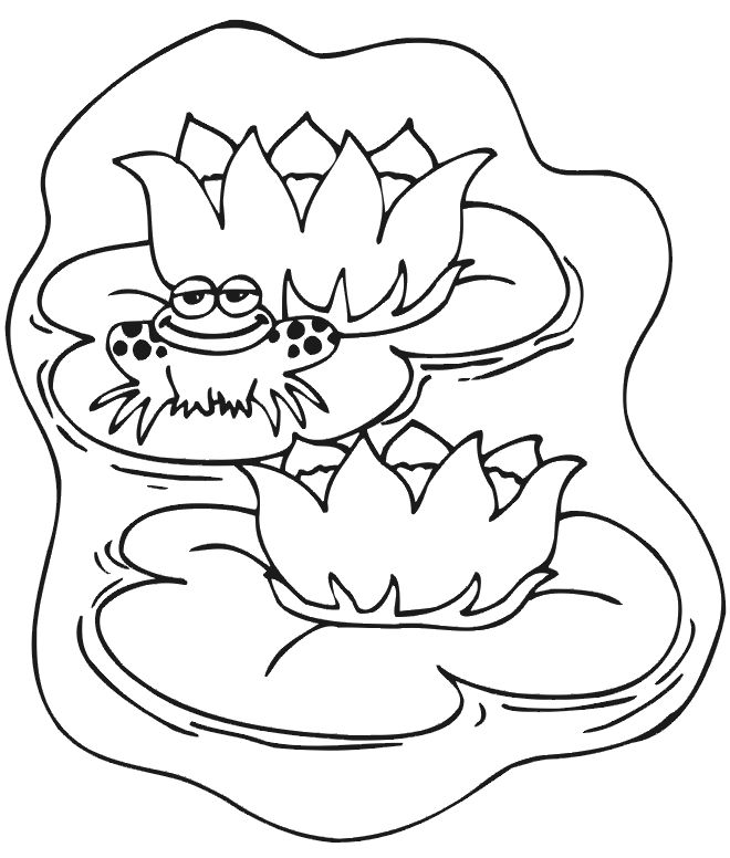660x776 Printable Lily Pad Coloring Pages Coloring Me Frog On Lily Pad