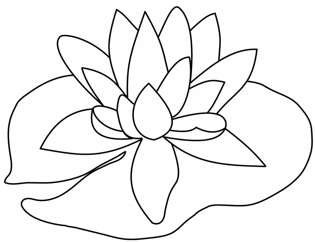 Lily Pad Flower Drawing At Getdrawings Free For Personal Use