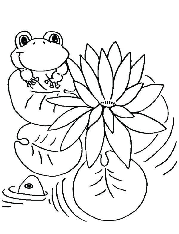 600x783 Lily Pad Coloring Sheet Lily Pad And Frog Coloring Page Frog Lily