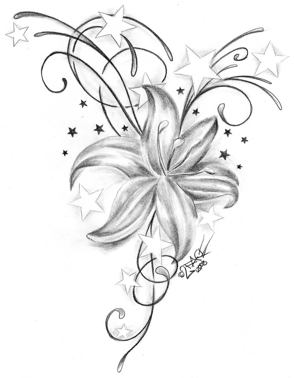 Lily Tattoo Line Drawing : Lily tattoo drawing at getdrawings free for personal