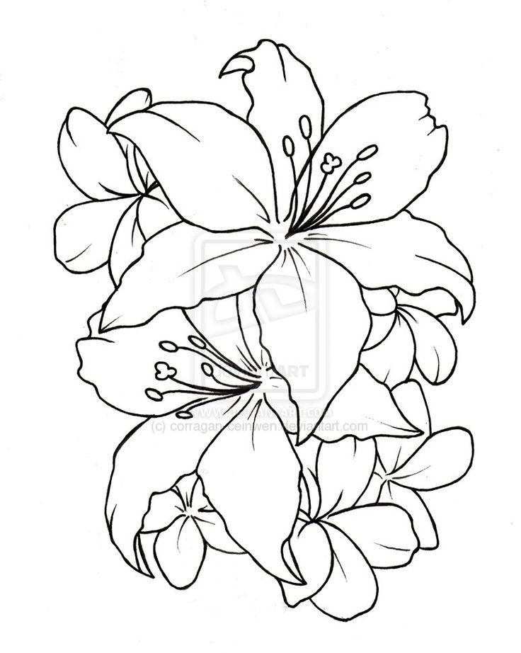 736x922 Lovely Tatto Flower Drawings Ceinwen