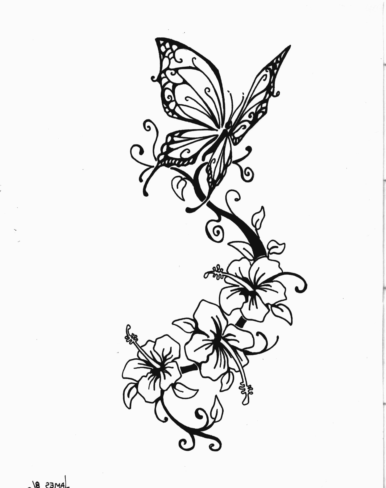 1251x1581 Butterfly And Lily Tattoo Designs Images About Tattoos