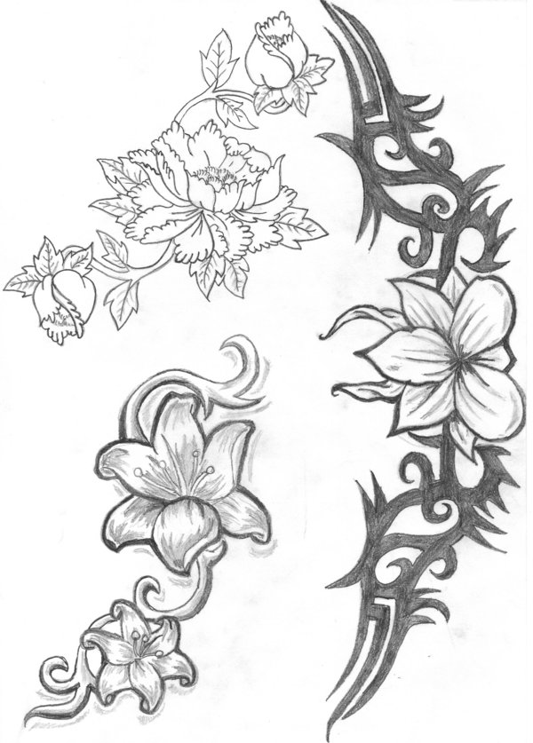 600x837 Collection Of Uncolored Lily And Daisy Tattoo Designs