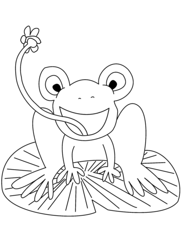 371x480 Frog On Lily Pad Catching Fly Coloring Page Free Printable