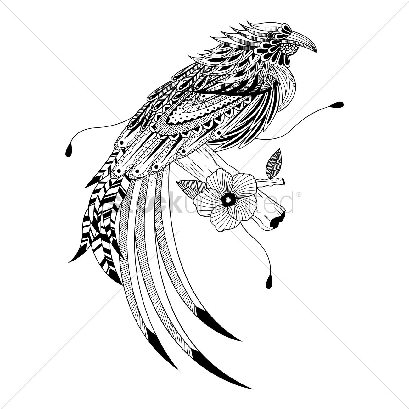 1300x1300 Intricate Bird Design Vector Image