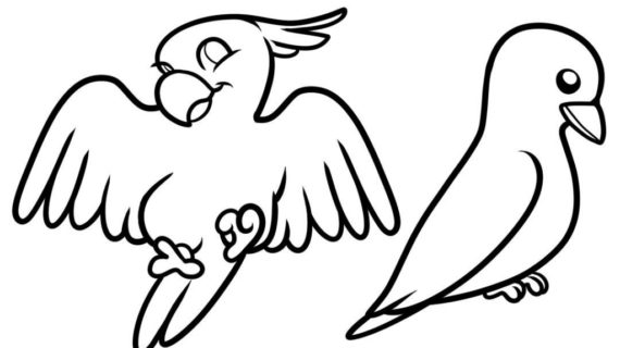 570x320 Easy Bird Drawing How To Draw A Flying Bird How To Draw A Bird